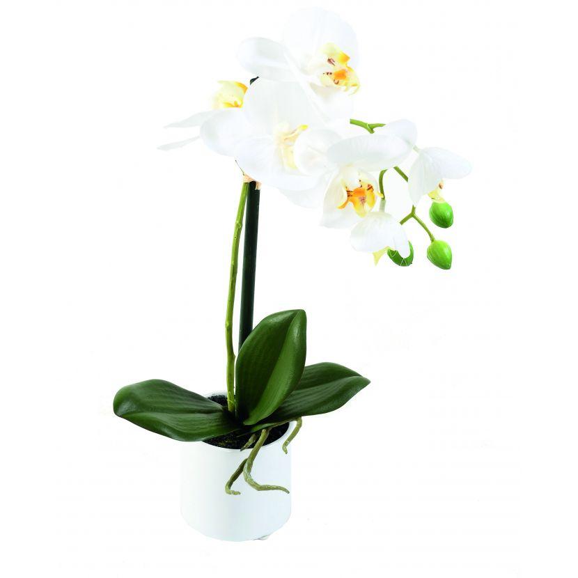 phalaenopsis-orchidee-artificielle-3941-58