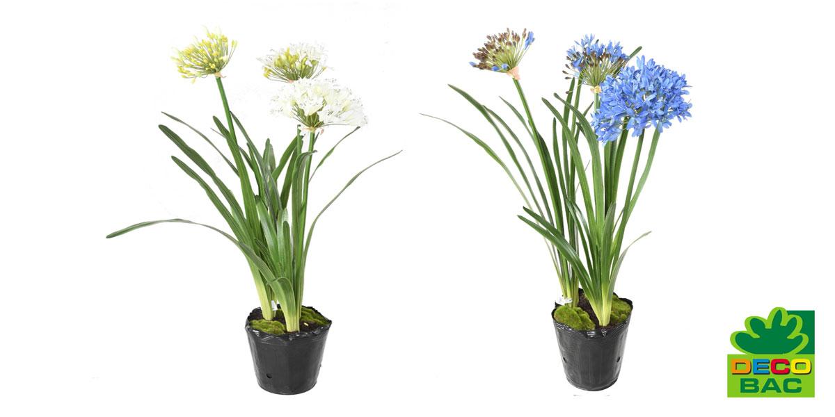 info-plante-artificielle-agapanthe